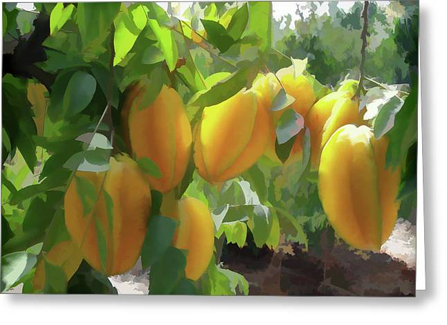 Costa Rica Star Fruit Known As Carambola Greeting Card by Lanjee Chee