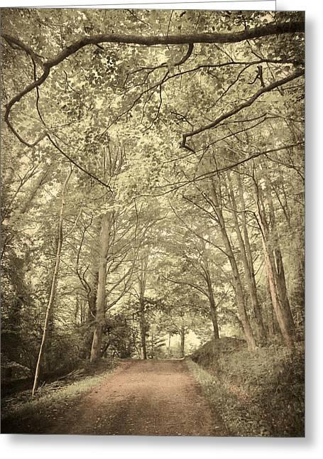Afraid Greeting Cards - Cosy Path Greeting Card by Svetlana Sewell