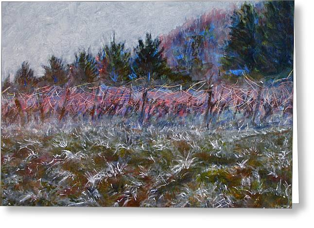 Cote De Beaune Greeting Cards - Cotes de Beaune Vineyard - Winter Greeting Card by SB Boursot