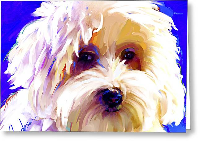 Coton De Tulear 2 Greeting Card by Jackie Jacobson