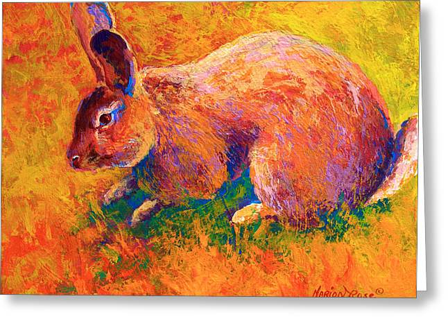 Hare Greeting Cards - Cottontail I Greeting Card by Marion Rose
