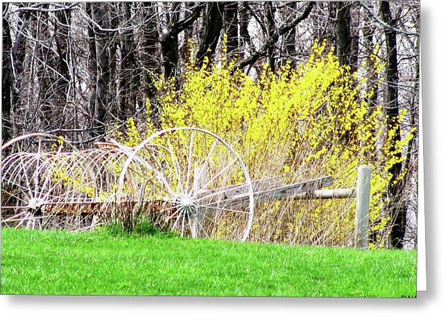 Sweep Of The Land Greeting Cards - Countrified Spring Greeting Card by Debra     Vatalaro