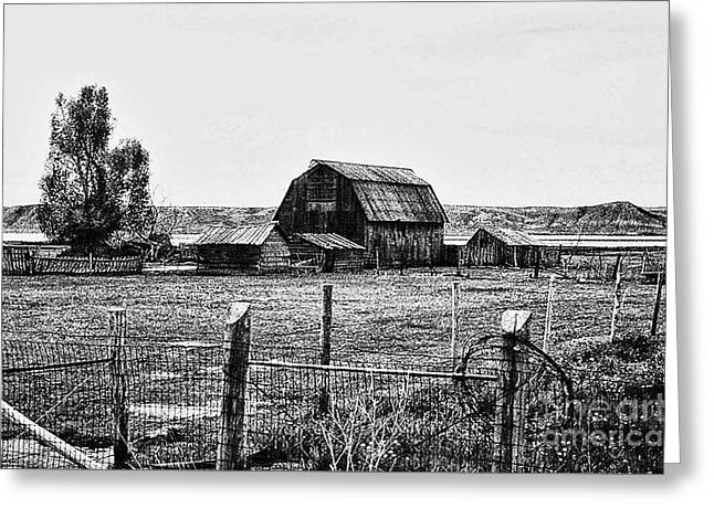 Outbuildings Greeting Cards - Country Barn 1 Greeting Card by Chris Berry