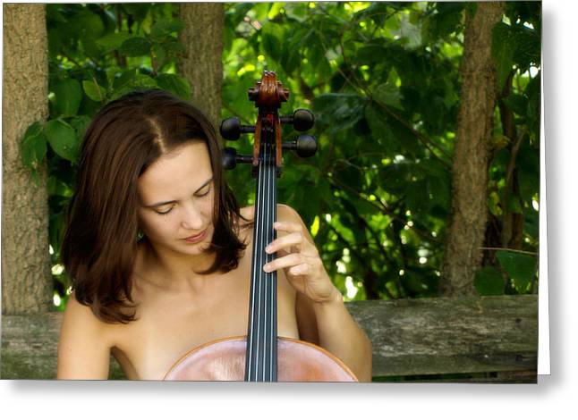 Cellist Greeting Cards - Country Cello  Greeting Card by Steven  Digman