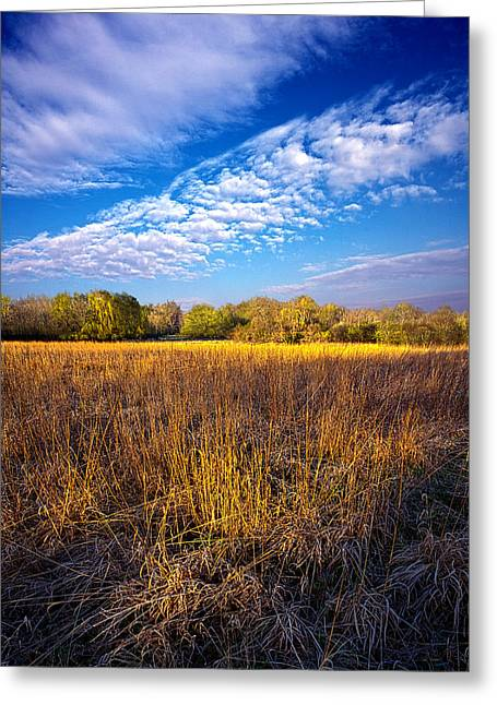Geographic Greeting Cards - Country Fresh Greeting Card by Phil Koch