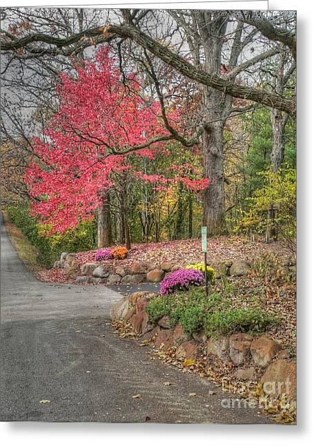 Barrington Greeting Cards - Country lane in fall Greeting Card by David Bearden