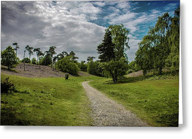 Country Lane Greeting Card by Martin Newman
