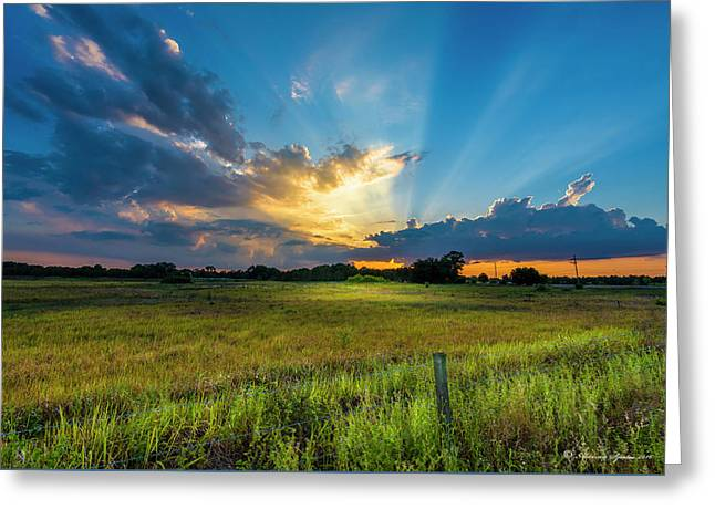 Country Life Greeting Card by Marvin Spates