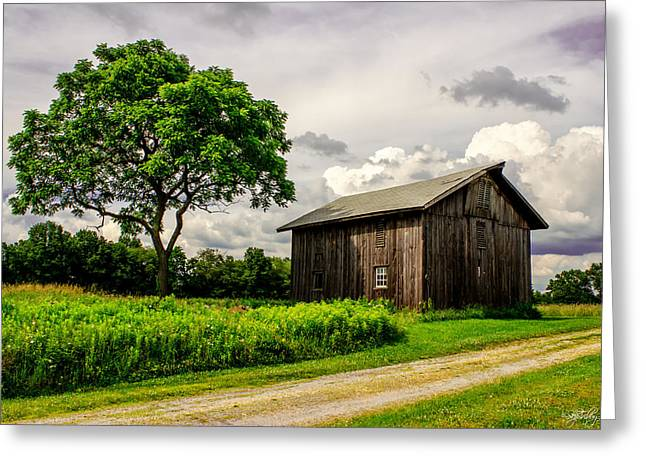 Skip Tribby Greeting Cards - Country Life Greeting Card by Skip Tribby