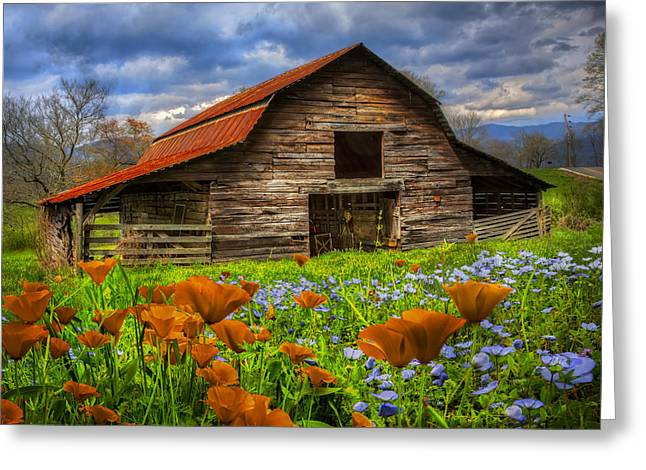 Red Roofed Barn Greeting Cards - Country Poppies Greeting Card by Debra and Dave Vanderlaan