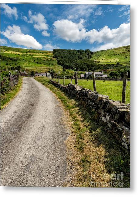 Greeting Cards - Country Road  Greeting Card by Adrian Evans