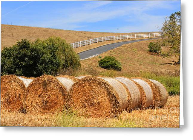 Hay Bales Greeting Cards - Country Road Color Greeting Card by Kris Hiemstra