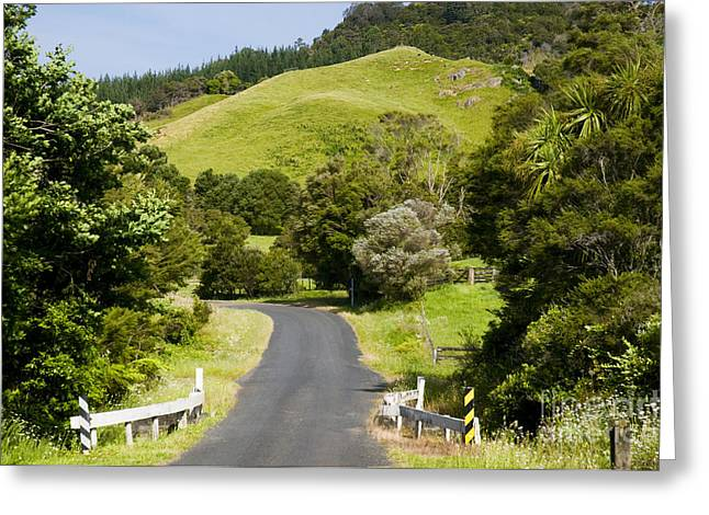 Sightsee Greeting Cards - Country Road Greeting Card by Himani - Printscapes