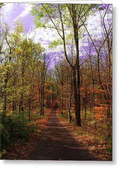 Country Dirt Roads Digital Greeting Cards - Country Road in Autumn Greeting Card by Bill Cannon