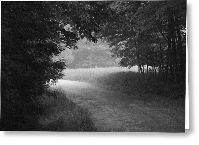 Indiana Landscapes Greeting Cards - Country Road Greeting Card by Michael L Kimble