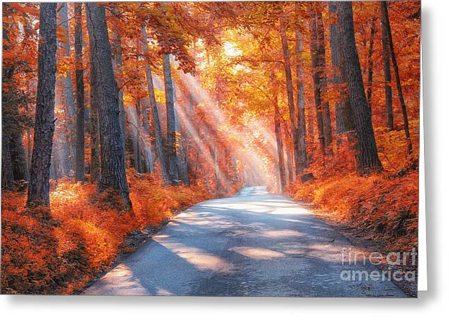 The Trees Greeting Cards - Country Roads Greeting Card by Geraldine DeBoer