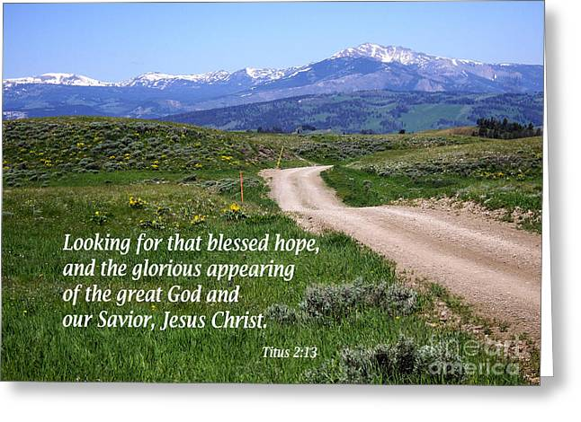 Testament Greeting Cards - Country Roads with Titus 2 verse 13 Greeting Card by Barbara Dalton