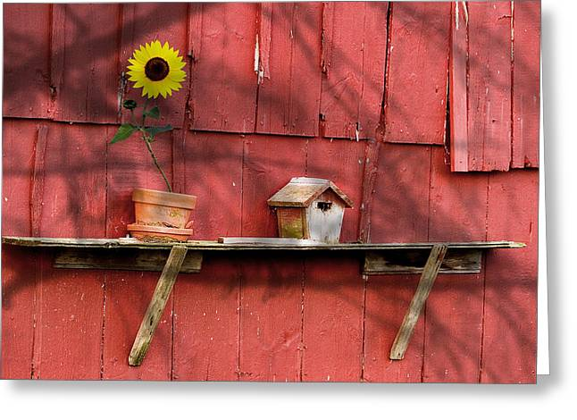 Yellow Flower Pot Greeting Cards - Country Still Life II Greeting Card by Tom Mc Nemar