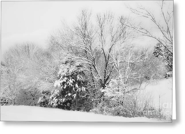 Rockbridge County Greeting Cards - Country Winter Greeting Card by Kathy Jennings
