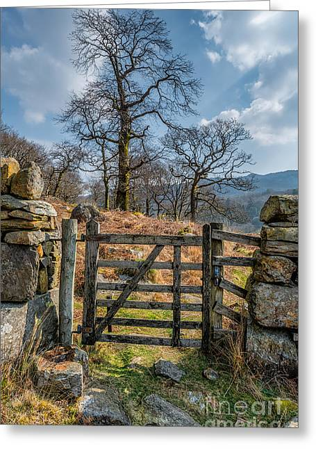 Moss Greeting Cards - Countryside Gate Greeting Card by Adrian Evans
