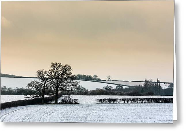 Wintry Greeting Cards - Countryside in winter Greeting Card by Katey jane Andrews