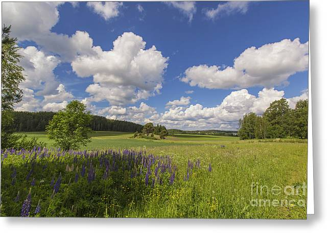 Rural Art Photographs Greeting Cards - Countryside Greeting Card by Veikko Suikkanen