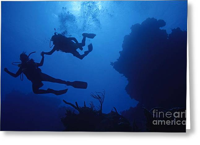 35-39 Years Greeting Cards - Couple of divers holding hands Greeting Card by Sami Sarkis