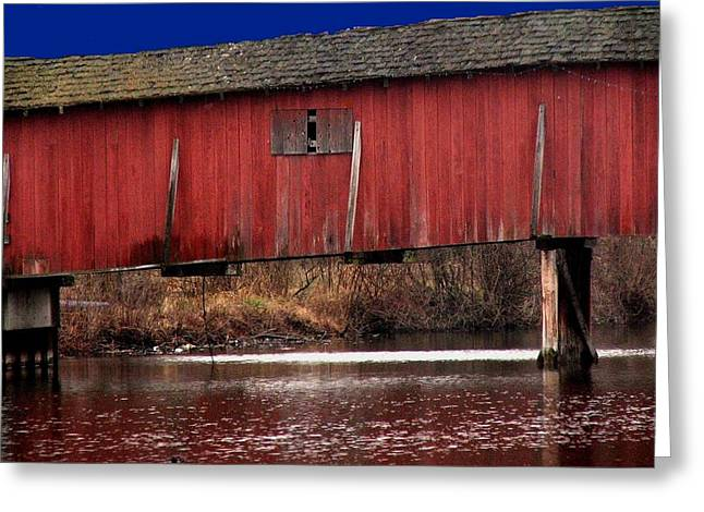 Indiana Landscapes Greeting Cards - Covered Bridge Greeting Card by Michael L Kimble
