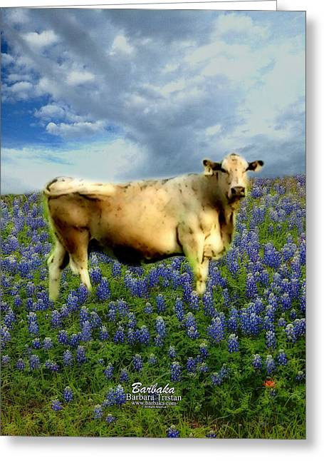Pastureland Greeting Cards - Cow and Bluebonnets Greeting Card by Barbara Tristan