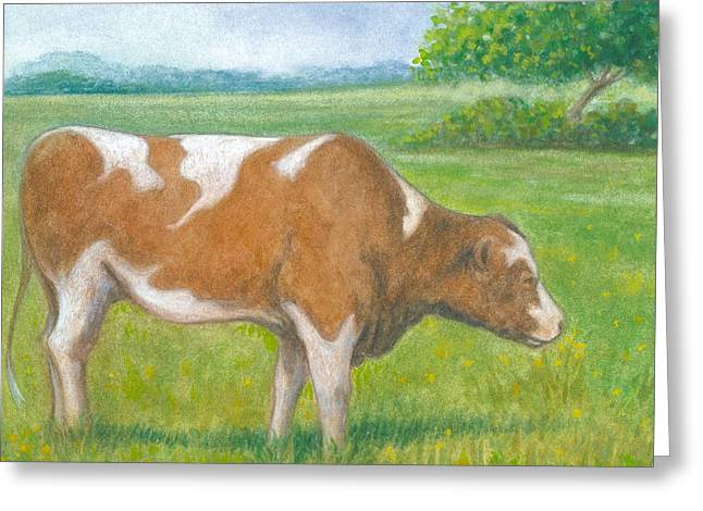 Farm Animals Pastels Greeting Cards - Cow at Pasture Greeting Card by Robert Casilla