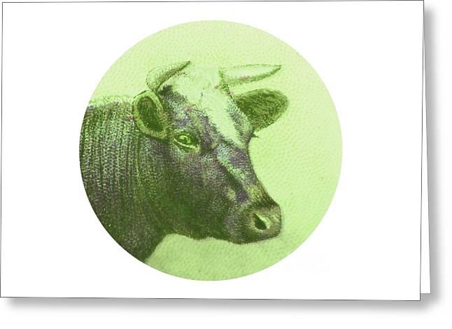 Fed Digital Art Greeting Cards - Cow II Greeting Card by Desiree Warren
