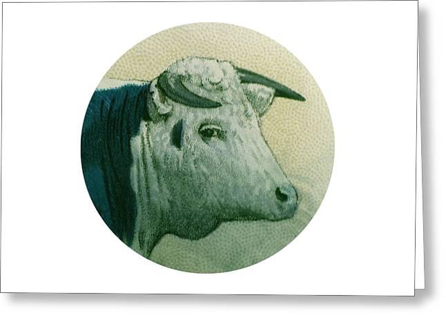 Fed Digital Art Greeting Cards - Cow III Greeting Card by Desiree Warren