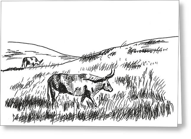 Pasture Scenes Drawings Greeting Cards - Country Morning Greeting Card by Masha Batkova