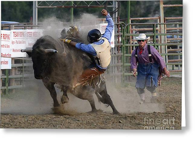 Bull Riding Greeting Cards - Cowboy Art 1 Greeting Card by Bob Christopher