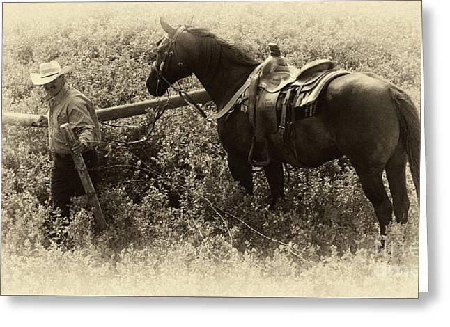 Bucking Horses Greeting Cards - Cowboy Art 18 Greeting Card by Bob Christopher