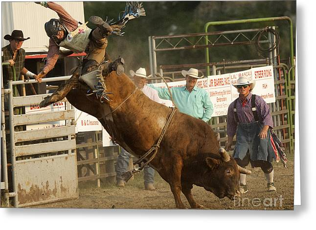 Bull Riding Greeting Cards - Cowboy Art 2 Greeting Card by Bob Christopher