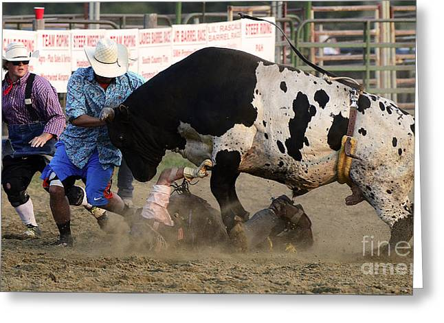 Bull Riding Greeting Cards - Cowboy Art 5 Greeting Card by Bob Christopher