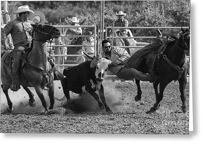Steer Greeting Cards - Cowboy Art 7 Greeting Card by Bob Christopher