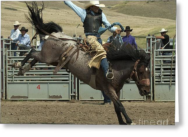 Western Life Greeting Cards - Cowboy Art 9 Greeting Card by Bob Christopher