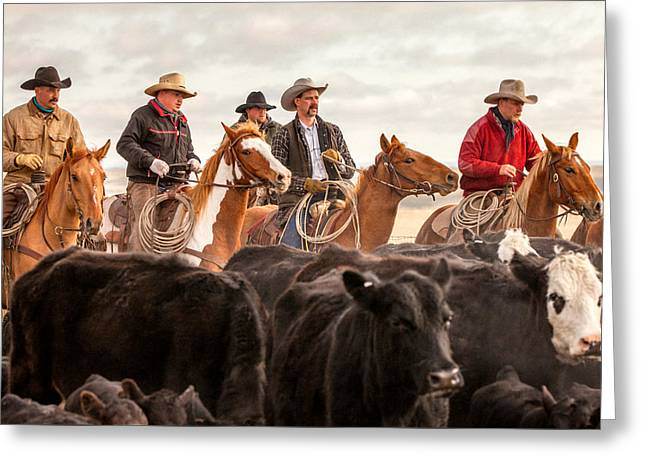 Cowboy Posse Greeting Card by Todd Klassy