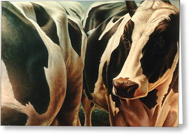 Cows 1 Greeting Card by Hans Droog