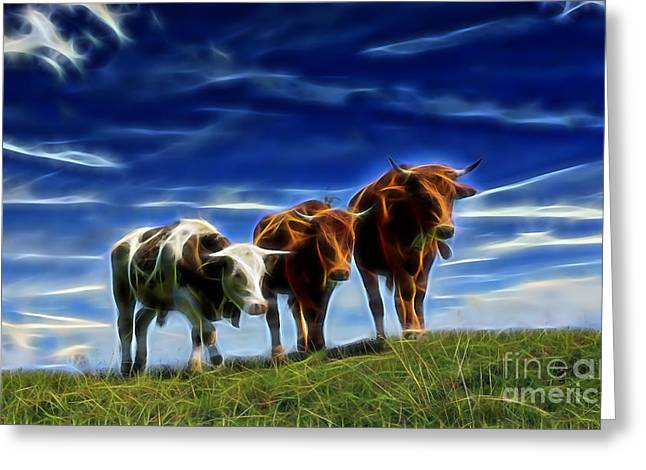 Cows Greeting Card by Marvin Blaine