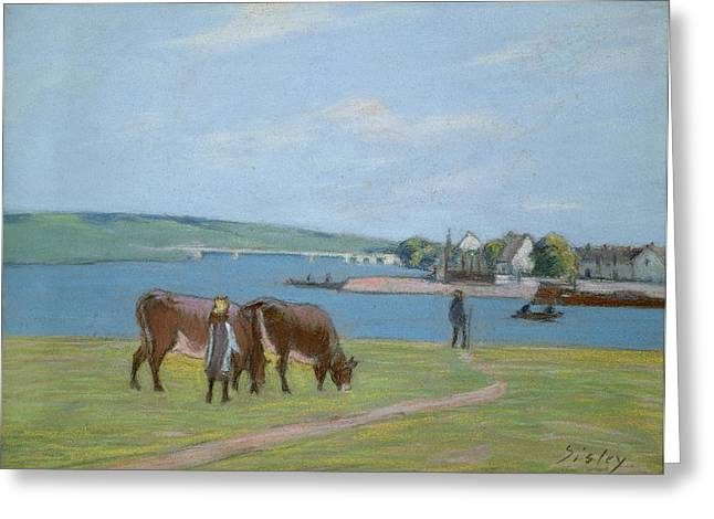 Farm Animals Pastels Greeting Cards - Cows on the Banks of the Seine at Saint Mammes Greeting Card by Alfred Sisley