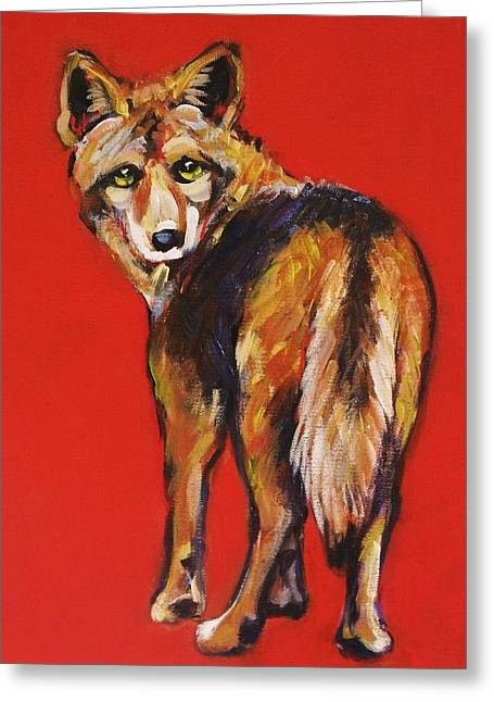 Coyote Art Greeting Cards - Coyote Looking Back Greeting Card by Carol Suzanne Niebuhr