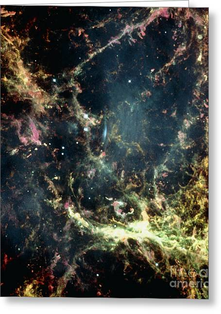 Crab Nebula Greeting Cards - Crab Nebula Greeting Card by Space Telescope Science Institute / NASA