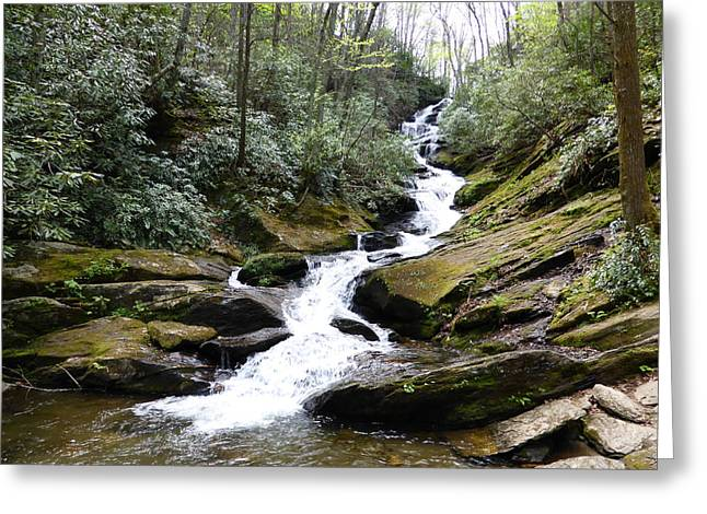 Roaring Fork Road Photographs Greeting Cards - Roaring Fork Falls  - May 2015 Greeting Card by Joel Deutsch