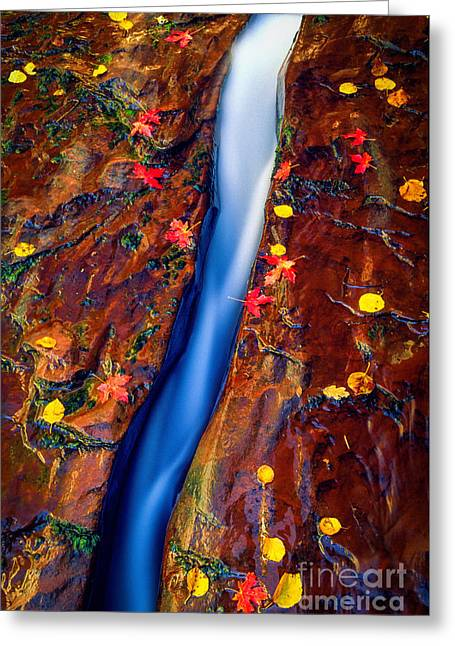 Slit Greeting Cards - Crack in the Rock Greeting Card by Inge Johnsson