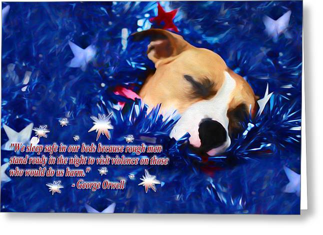Apbt Greeting Cards - Cradled by a Blanket of Stars and Stripes - Quote Greeting Card by Shelley Neff