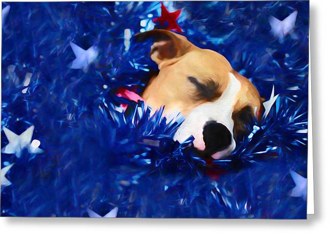 Apbt Greeting Cards - Cradled by a Blanket of Stars and Stripes Greeting Card by Shelley Neff
