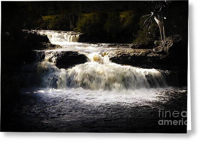 Cradle-mountain Greeting Cards - Cradle Mountain waterfall in picturesque Tasmania Greeting Card by Ryan Jorgensen